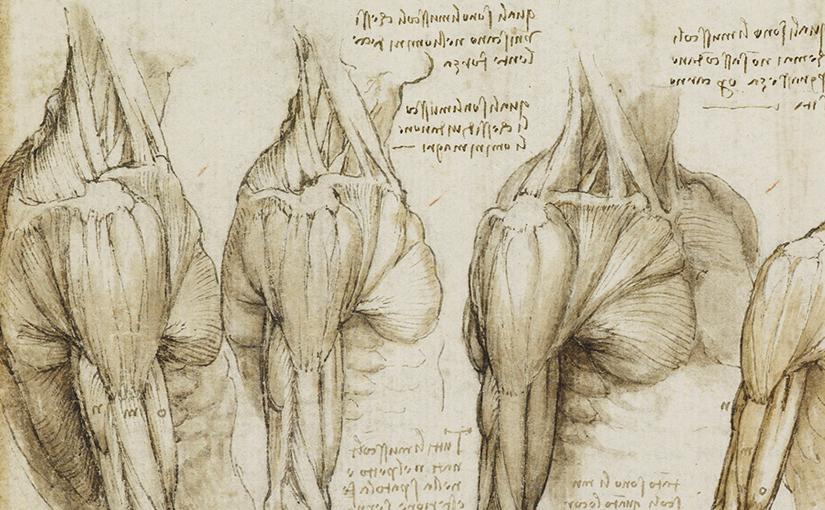 A ilustração do corpo para entender a Igreja Universal